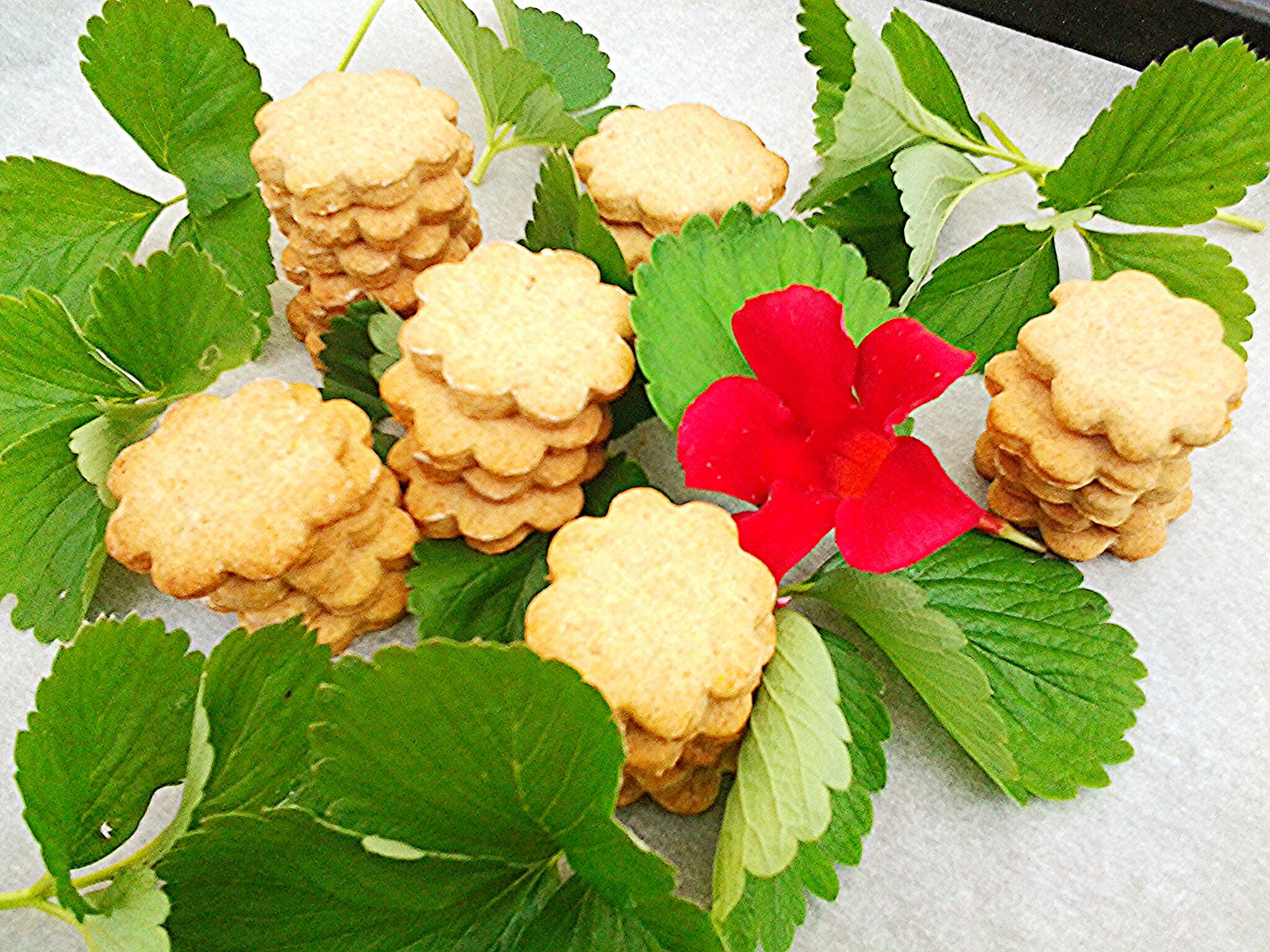 """Biscotti semplici al farro integrale detti anche """"biscotti senza niente"""""""
